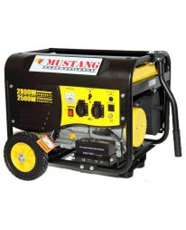 Бензиновый генератор Mustang CPG3000E2